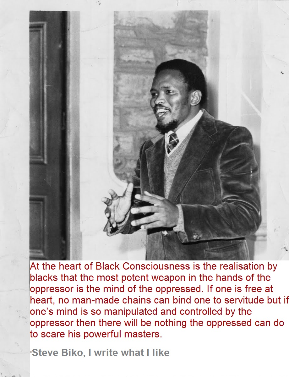 Steve Biko - I write what I like